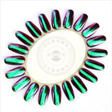 Pigment-Chamäleon-Spiegel-Effekt-Nagel-Kunst-Puder des Chrom-Ocrown88809