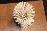Bester Verkaufs-natürliche starke Bambus BBQ-Wegwerfstöcke mit Firmenzeichen