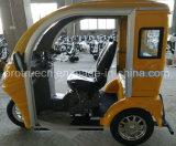 Los pasajeros de turismo de tres ruedas para personas con discapacidad