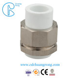 PPR лампа останова клапана PPR горячей установки продажи фитинг обратного клапана
