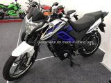 """motocicleta elétrica adulta de Aguila Ava do puma de 1500W 2500W 3000W Cuba Panamá com """" roda 16 (FX)"""