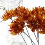 Huwelijk Kunstmatige Daisy Flower voor de Stammen van de Chrysant van de Slinger van de Bloem van de Decoratie van het Huwelijk van de Bloem van Lijsten