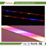 LED Keisue usine fabrique de lumière pour les plantes