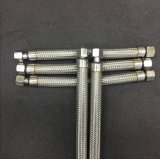Boyau ondulé tressé en métal avec l'ajustage de précision de TNP Bsp