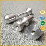 Pezzi meccanici di CNC dell'alluminio di precisione/acciaio inossidabile d'ottone/che girano  Parti