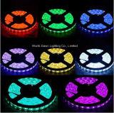 Purpurrote Farbe für SMD 2835, SMD5050, SMD5730, SMD 3528 LED Streifen-Licht