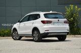 De hete Mooie Model Elektrische Auto SUV van de Verkoop met Hoge snelheid
