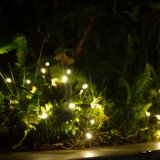 [هيغقوليتي] لعبة ناريّة خفيفة [لد] عيد ميلاد المسيح خيط ضوء