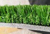 Non remplissage Gazon synthétique pour les terrains de soccer, le football de l'herbe (V30-R)