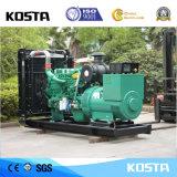 250kVA gerador diesel Resistente às Intempéries Cummins Kosta Potência com marcação CE