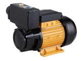 セリウムの公認モデルTPS80 1HPが付いている自動プライミング水ポンプ