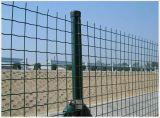 Acoplamiento soldado de Eurofence de la cerca del acoplamiento de alambre para el jardín