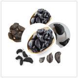 Delicioso Alho Negro Colar em nossa vida