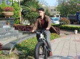中国26inchの脂肪質のタイヤの雪の砂のMoutainの電気自転車