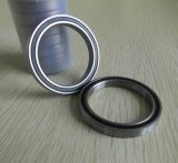 도매 Lubrication Bearing 16100 2RS Deep Groove Ball Bearing