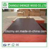 Negro fenólica de carpintería, madera contrachapada Encofrado