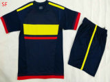2015 het Hete Voetbal Jersey van Colombia van de Verkoop Gele Blauwe