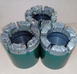 Bit de broca do núcleo do Tc (carboneto de tungstênio) T.C. Carberit para a formação de rocha macia
