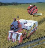 Catena di Agicultural della catena della mietitrice del riso (DP-011)