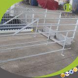 Stalle galvanisée bon marché de caisses de gestation de porc d'IMMERSION chaude de prix usine