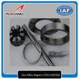 Uitstekende kwaliteit Gegoten Magneet AlNiCo (LN10-LNGT36J)