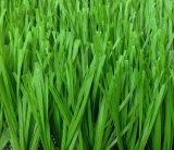 스포츠를 위한 고품질 모노필라멘트 인공적인 잔디 또는 뗏장
