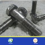 Qualité Stainless Steel 304 ou 316 Hex Bolt