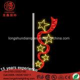 Decoratie van de Dag van de Vakantie van het LEIDENE Motief van de Bloem de Nationale