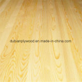 Contre-plaqué de bois dur Poplar Core Interior Use