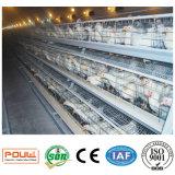 Клетки слоя птицефермы оборудования птицефермы Нигерии