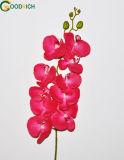 Fiore artificiale dell'orchidea reale di tocco
