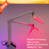 Strumentazione chiara di terapia del salone di bellezza LED per ringiovanimento profondo di Phototherapy