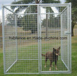 Cage extérieure de crabot de chenil de crabot galvanisée par personnalisation