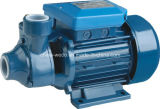 Clean Water (1HP)를 위한 전기 Clean Water Pump Pm60 1inch Outlet