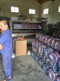 Action de vente chaude de tissu de sofa de Chenille de 1USD/M--Un tissu d'action de qualité de pente