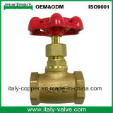 Atacado Ce Quality Brass Forged Stop Valve (AV-SV-1016)