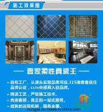 Résine époxy Moldproof, la tuile coulis de ciment, joint en silicone adhésif époxy, super colle, de la maison. La décoration, la peinture. Matériau de construction.