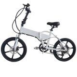 "250-500W 36-48V 건전지 20 "" Foldable En15194를 가진 Grankee 전기 자전거"