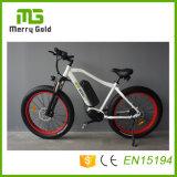 Bicicletas poderosas da praia E de 48V 750W Ebikes para as bicicletas de montanha elétricas adultas de MTB feitas em China