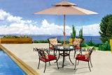 Tableau en aluminium HS6001dt extérieur/de jardin/patio rotin