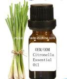 Petróleo essencial da citronela natural pura do tratamento 100% da pele da fonte da fábrica