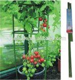 Eco-Friendly гальванизированное вокруг клеток томата, стойка томата, ручка томата