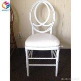 樹脂のフェニックスの白い椅子の現代Chiavariの椅子