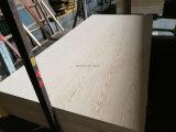 La ceniza de madera contrachapada de contrachapado de roble / /Okoume contrachapado de madera contrachapada / Bintangor