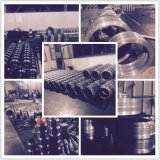 La CPM Szlh piezas de repuesto de maquinaria de alimentación de la serie acero aleado o anillo de acero inoxidable Die