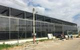 Prefabricated 지적인 시스템 모듈 강철 구조물 구조물 온실