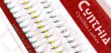 Cigli comodi del chiarore dei capelli del Sable di migliore qualità con il cristallo