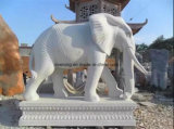 Statua animale della scultura di pietra di marmo, elefante bianco che intaglia per il giardino