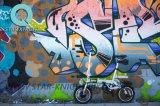 La bici pieghevole elettrica viene con qualità eccellente della batteria di litio di Panasonic buona