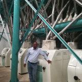 Fresatrice del cereale industriale da 100 tonnellate per Semoulina